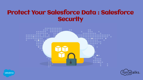 Protect Your Salesforce Data : Salesforce Security