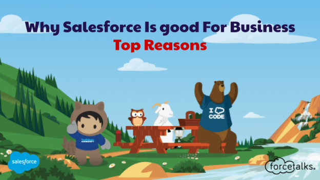 salesforce for business