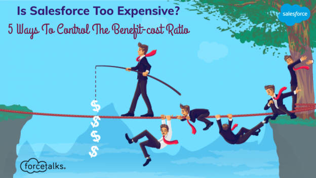 salesforce too expensive