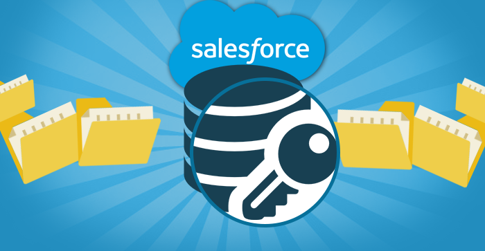 Salesforce Data Access and Visibility