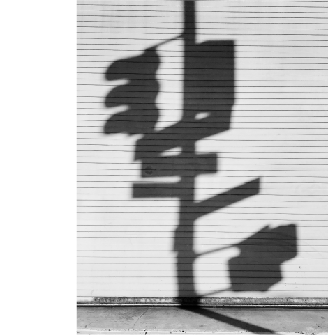 Issue 08