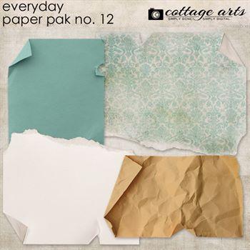 Everyday 12 Paper Pak
