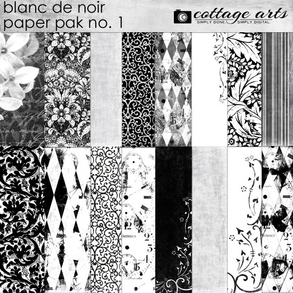 Blanc De Noir Paper Pak 1 Digital Art - Digital Scrapbooking Kits