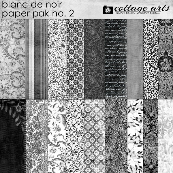 Blanc De Noir Paper Pak 2 Digital Art - Digital Scrapbooking Kits