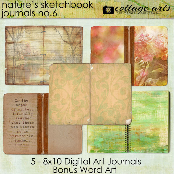 Nature's Sketchbook - Journals 6