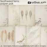 Feathered Ferns Paper Pak