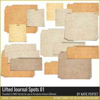 Lifted Journal Spots 01