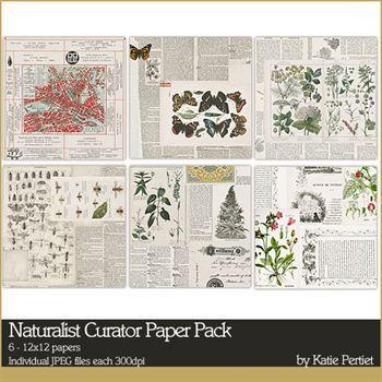 Naturalist Curator Paper Pack