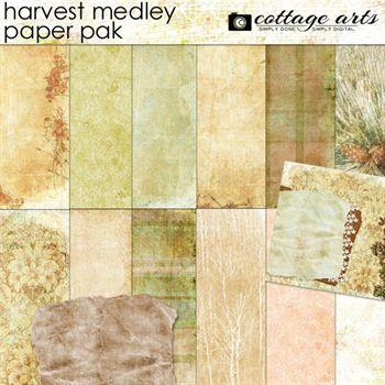 Harvest Medley Paper Pak