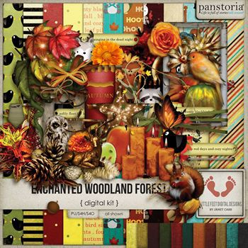 Enchanted Woodland Forest
