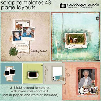 12 X 12 Scrap Templates 43 - Page Layouts
