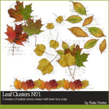Leaf Clusters No. 01