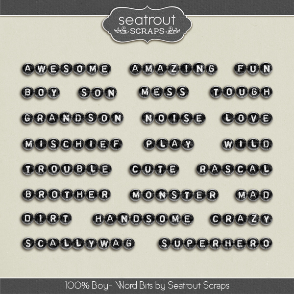 100% Boy Word Bits Digital Art - Digital Scrapbooking Kits