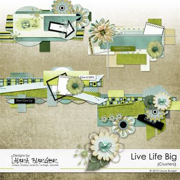 Live Life Big Clusters