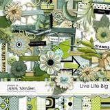 Live Life Big Scrap Kit