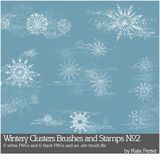 Wintery Clusters Brushes And Stamps No. 02