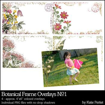 Botanical Frame Overlays No. 01