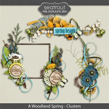 A Woodland Spring Clusters