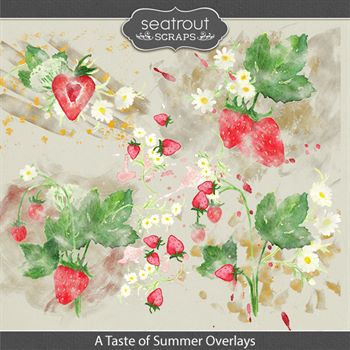 A Taste Of Summer Overlays Digital Art - Digital Scrapbooking Kits