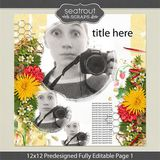12 X 12 Predesigned Editable Page 1