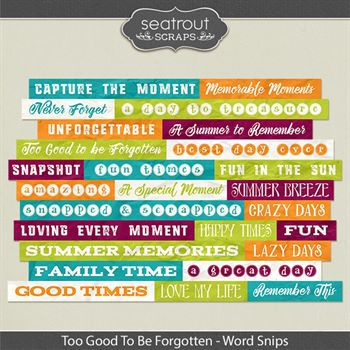 Too Good To Be Forgotten Word Strips