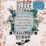 100% Scrap Addict Embellishments