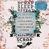 100% Scrap Addict Word Strips
