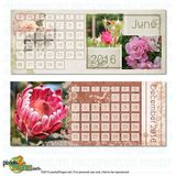 2016 Clean & Classic Desk Calendar (4x10) P2p Use Only