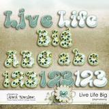 Live Life Big Bundle
