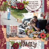 Love Lives Here Overlays