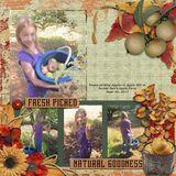 Autumn Harvest Page Borders
