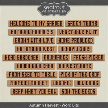 Autumn Harvest Word Bits