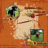 Off The Leash Cardstock