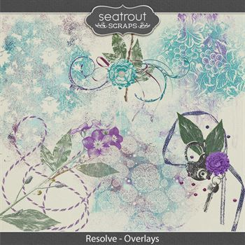 Resolve Overlays Digital Art - Digital Scrapbooking Kits