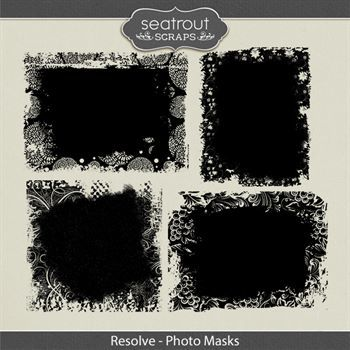 Resolve Photo Masks