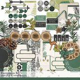 Evergreens Scrapbooking Kit