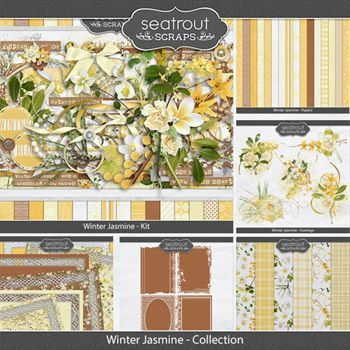 Winter Jasmine Discounted Bundle