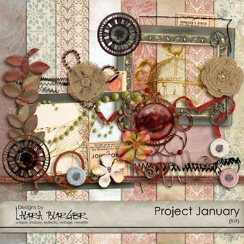 Project January
