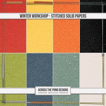 Winter Workshop - Stitched Solid Papers