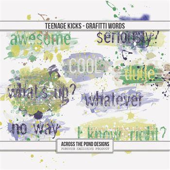 Teenage Kicks Graffiti Words