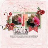Blooming Lovely - Poppy Mini Grab Bag