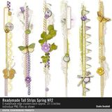 Readymade Tall Strips Spring No. 02