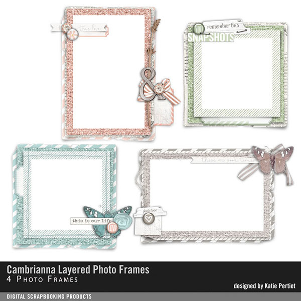 Cambrianna Layered Photo Frames
