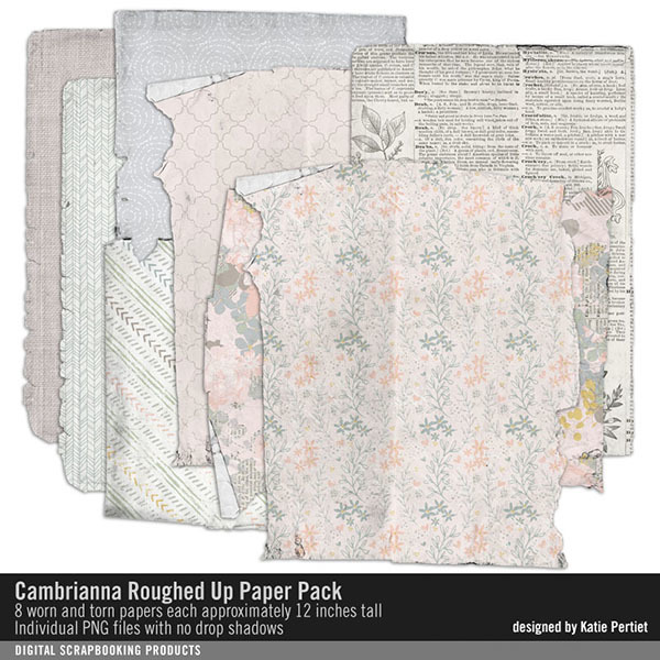 Cambrianna Roughed Up Paper Pack Digital Art - Digital Scrapbooking Kits
