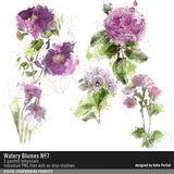 Watery Blumes No. 07