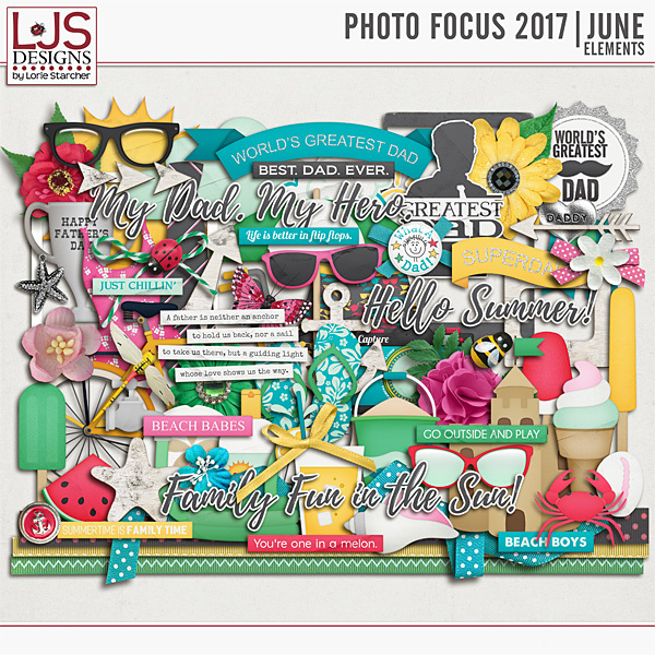 Photo Focus 2017 - June Elements