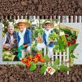Veggie Garden Pages