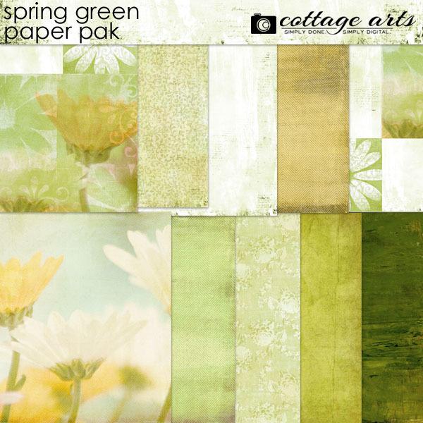 Spring Green Paper Pak