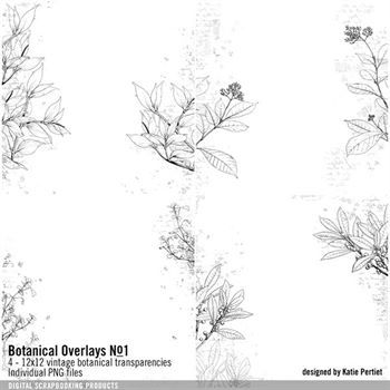 Botanical Overlays No. 01