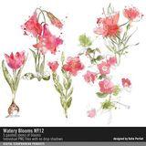 Watery Blumes No. 12